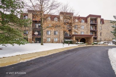 2005 Valencia Drive UNIT 210D, Northbrook, IL 60062 - #: 10251959