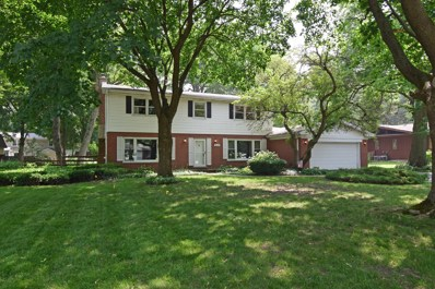 317 E Forest Lane, Palatine, IL 60067 - #: 10252095