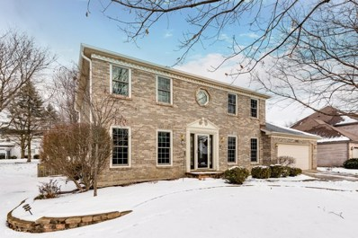 291 Winding Creek Drive, Naperville, IL 60565 - #: 10252481