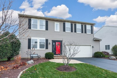 14521 Independence Drive, Plainfield, IL 60544 - #: 10253033