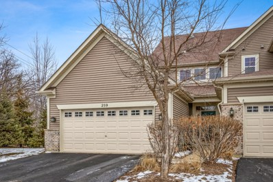259 Hickory Lane, South Elgin, IL 60177 - #: 10253593