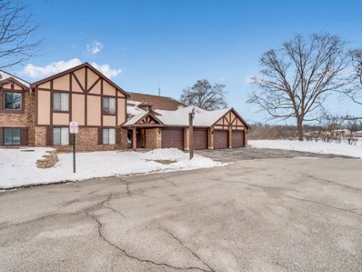 1661 Dover Court UNIT B, Wheaton, IL 60189 - #: 10254007