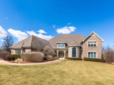 5N836  Il Route 25, St. Charles, IL 60174 - #: 10254114