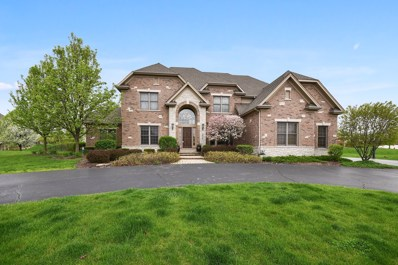 4025 River View Drive, St. Charles, IL 60174 - #: 10254376