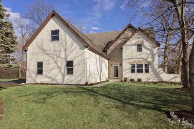 26573 N Pond Shore Drive, Wauconda, IL 60084 - #: 10254481