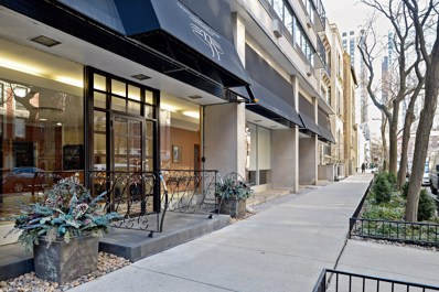 33 E Cedar Street UNIT 3A, Chicago, IL 60611 - #: 10254600