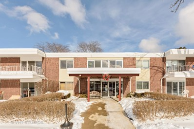 100 Deborah Lane UNIT A19, Wheeling, IL 60090 - #: 10254701