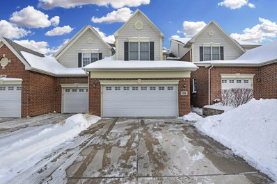 28 Red Tail Drive, Hawthorn Woods, IL 60047 - #: 10254728
