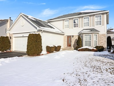 215 Two River Court, Romeoville, IL 60446 - #: 10255461