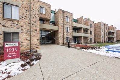 1919 Prairie Square UNIT 222, Schaumburg, IL 60173 - #: 10255530