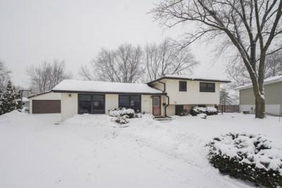 807 Cornell Lane, Schaumburg, IL 60193 - #: 10255549