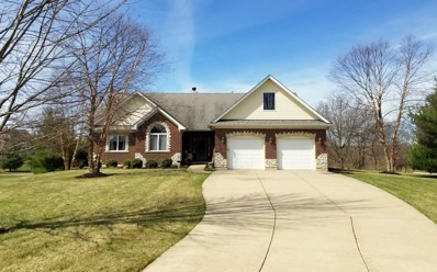 8845 Kimball Court, Newark, IL 60541 - #: 10255903