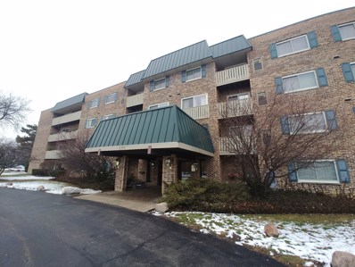 675 Grove Drive UNIT 211, Elk Grove Village, IL 60007 - #: 10256967