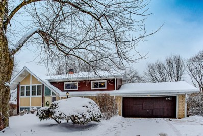 441 Pierce Avenue, Roselle, IL 60172 - #: 10257017