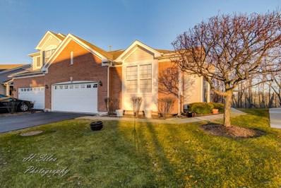 47 Regent Drive, Gilberts, IL 60136 - #: 10257047
