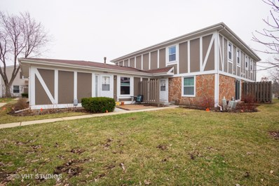 1052 Hampton Harbor UNIT 1052, Schaumburg, IL 60193 - #: 10257135