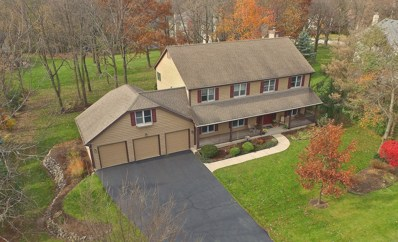 1215 Dublin Court, Woodstock, IL 60098 - #: 10257263
