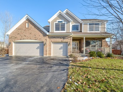 1317 Morning Dove Lane, Antioch, IL 60002 - #: 10257379