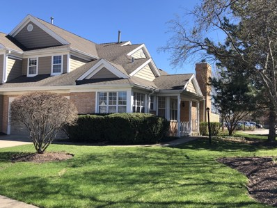253 Woodstone Circle, Buffalo Grove, IL 60089 - #: 10258707