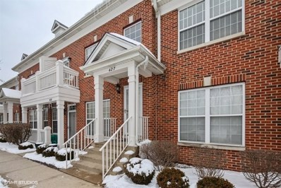 427 Commons Circle UNIT 0, Clarendon Hills, IL 60514 - #: 10259209