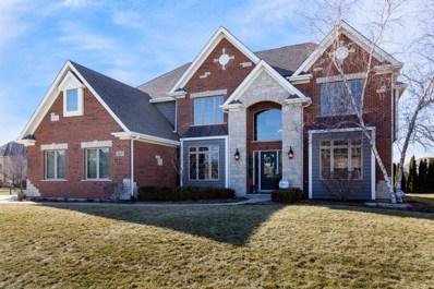 5435 Silk Oak Drive, Naperville, IL 60564 - #: 10259238