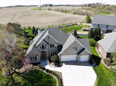 16838 Steeplechase Parkway, Orland Park, IL 60467 - #: 10259866