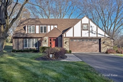 357 Windsor Lane, Inverness, IL 60010 - #: 10260349