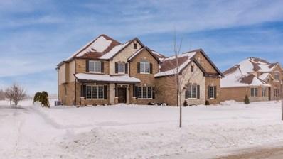 22163 Mary Drive, Frankfort, IL 60423 - MLS#: 10260444