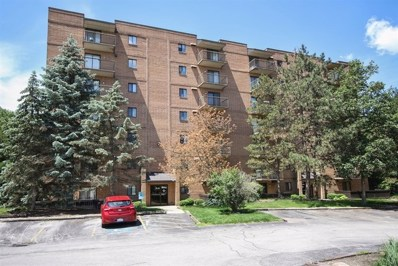 6050 Lake Bluff Drive UNIT 201, Tinley Park, IL 60477 - MLS#: 10261156