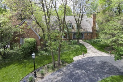42 Bridlewood Lane, Northbrook, IL 60062 - #: 10261673