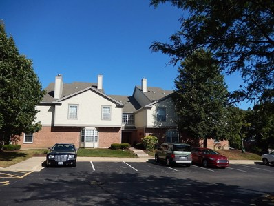 1751 Sleepy Hollow Court UNIT 1, Schaumburg, IL 60195 - #: 10261900