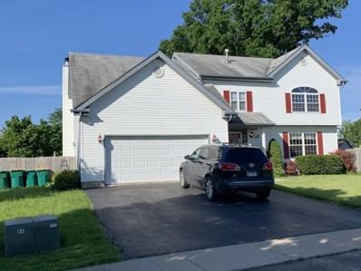 102 Bushthorn Drive, Elwood, IL 60421 - #: 10261965