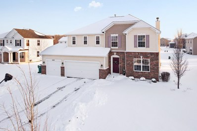 24119 Mission Creek Court, Plainfield, IL 60544 - #: 10262172