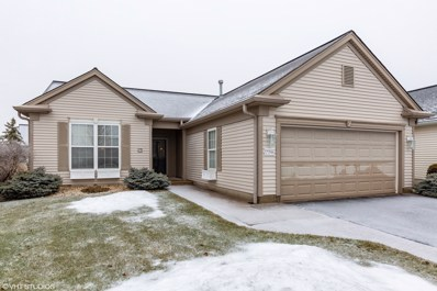 13396 Cadence Drive, Huntley, IL 60142 - #: 10262216