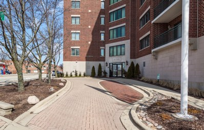 201 N Vail Avenue UNIT 509, Arlington Heights, IL 60004 - #: 10263481
