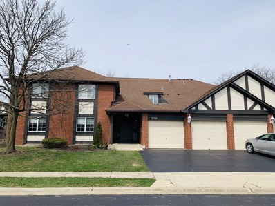 210 Windsor Lane UNIT D, Willowbrook, IL 60527 - #: 10263853