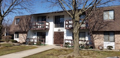 1060 S Nelson Avenue UNIT 6, Kankakee, IL 60901 - MLS#: 10263906