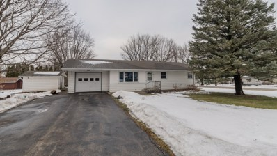 401 W Grant Street, Stillman Valley, IL 61084 - #: 10264592