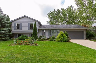 5313 W Winding Creek Drive, Mchenry, IL 60050 - #: 10264719