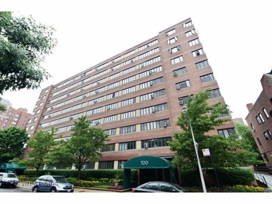 700 W Bittersweet Place UNIT 508, Chicago, IL 60613 - #: 10265415
