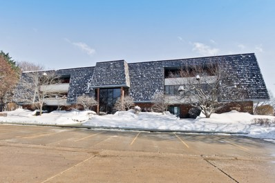 100 Red Top Drive UNIT 203, Libertyville, IL 60048 - #: 10265620
