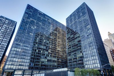 910 N Lake Shore Drive UNIT 2015