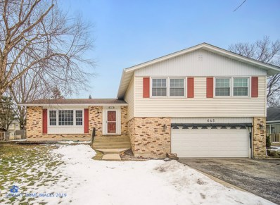 645 Clearview Court, Algonquin, IL 60102 - #: 10266139