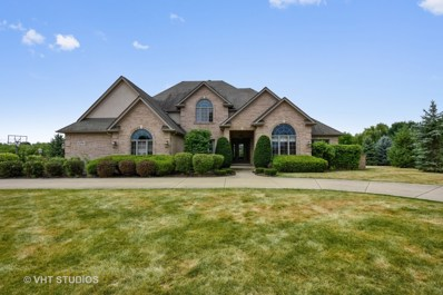 10956 Royal Porthcawl Drive, Naperville, IL 60564 - #: 10267823
