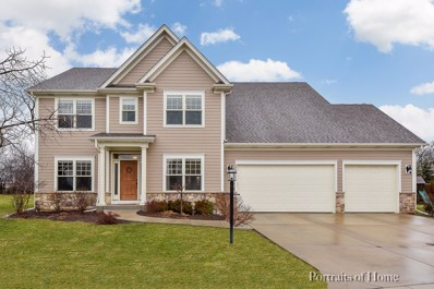 2064 Windham Circle, Wheaton, IL 60187 - #: 10268713