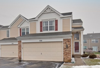 728 Silk Oak Lane UNIT 728, Crystal Lake, IL 60014 - #: 10268949