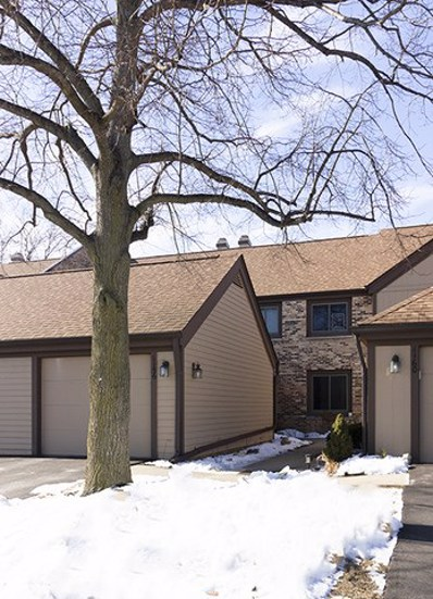 1156 Franklin Lane, Buffalo Grove, IL 60089 - #: 10268965
