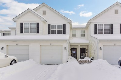 832 Genesee Drive, Naperville, IL 60563 - #: 10269010