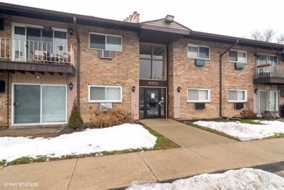 800 E Old Willow Road UNIT 2207, Prospect Heights, IL 60070 - #: 10269161