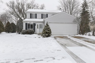 1407 Canyon Run Road, Naperville, IL 60565 - #: 10269339